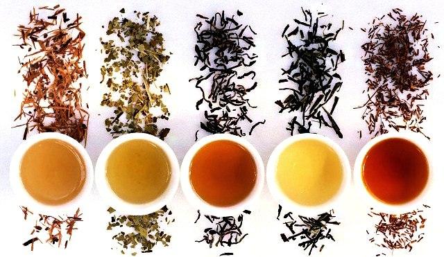 Польза или вред чая для организма и нашего здоровья
